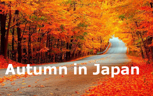 Japanese class in India and Japan - DCJL